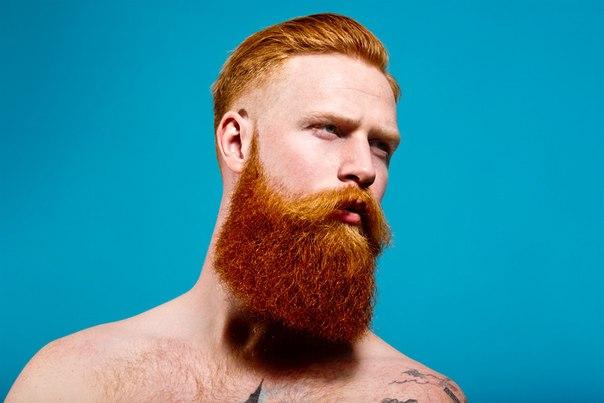 Рыжая борода - 2
