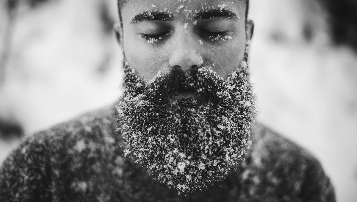 Факты о бороде 2 - фото